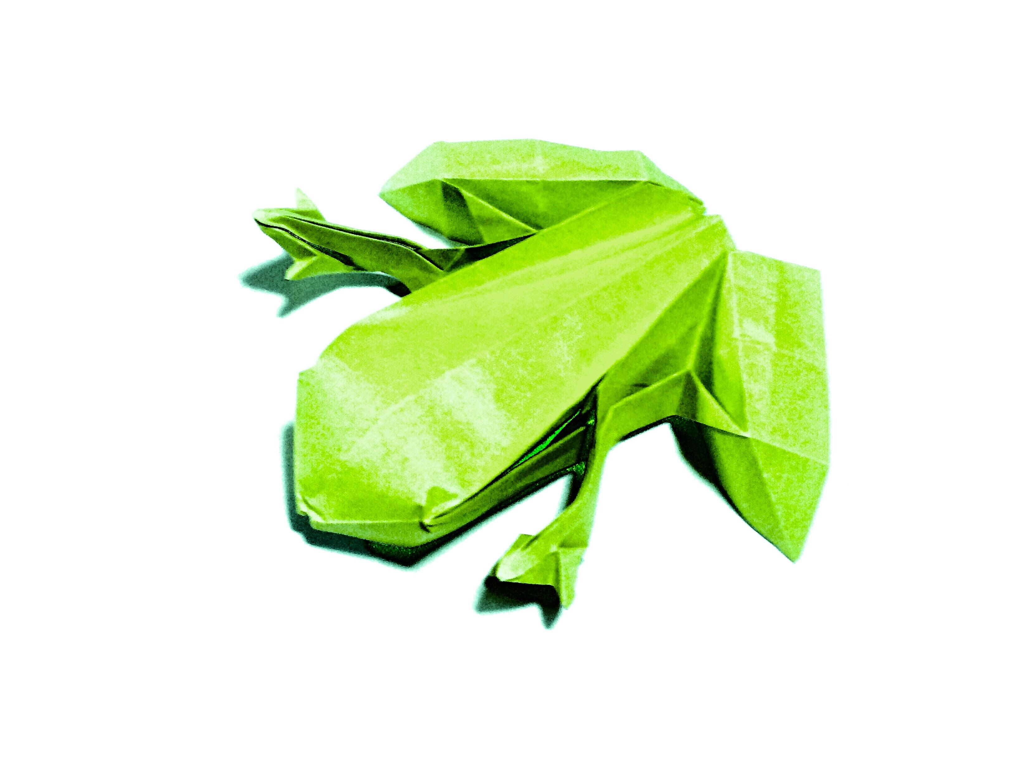 Origami Frog (Ranoshi) 折り紙 かえる | Origami tutorial ... - photo#25
