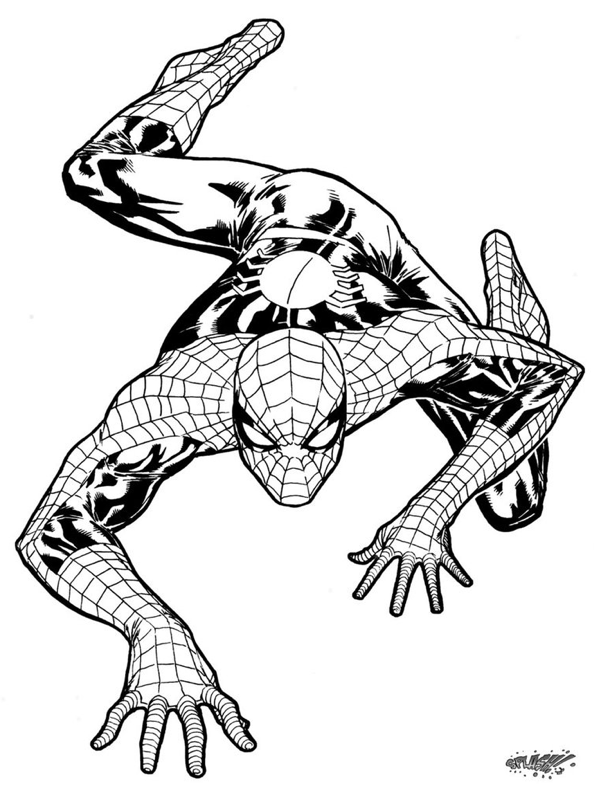 pinshelly perkins on comics  spiderman coloring