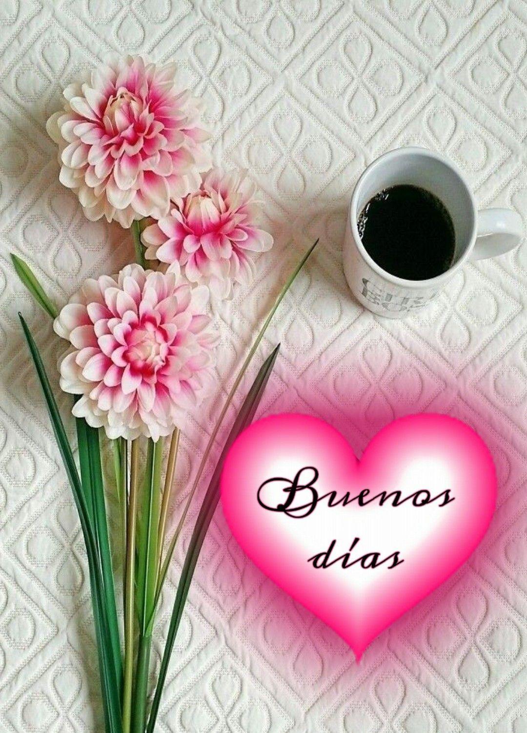 Frases De Amor Bonitas De Buenos Dias Para Una Amiga Good Day