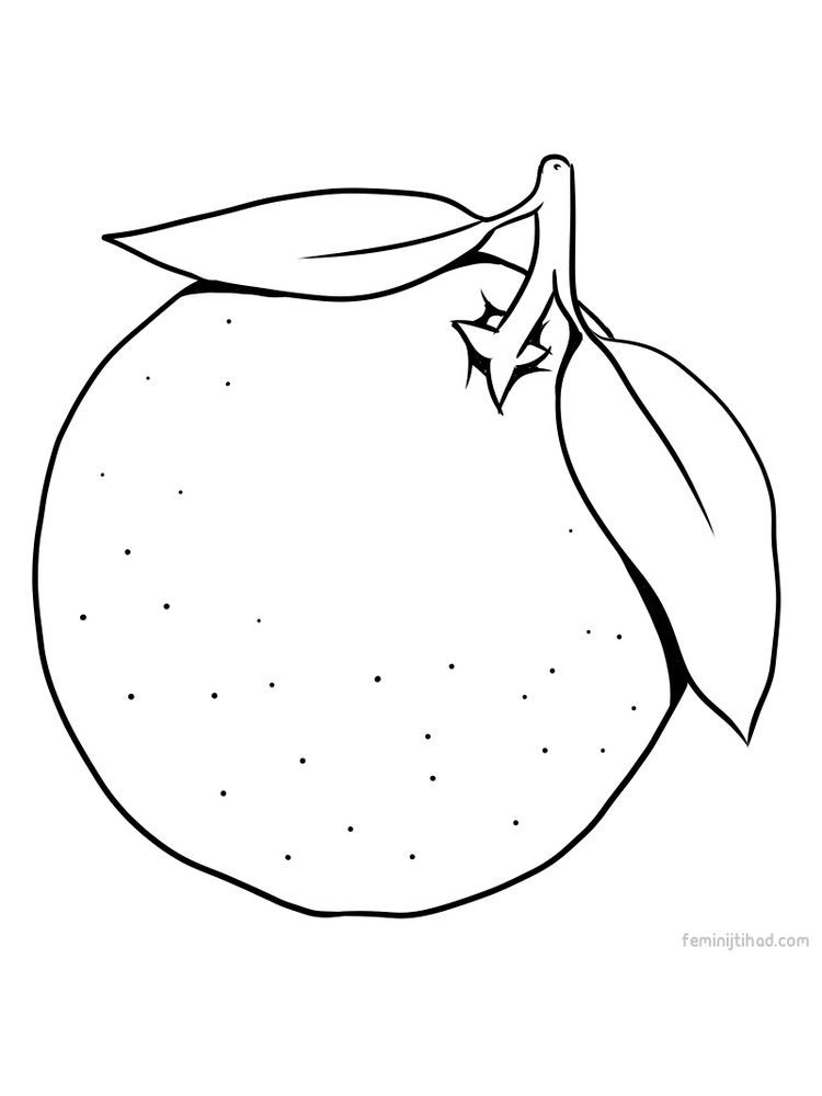 New Orange Page Printables Fruit Coloring Pages Coloring Pages