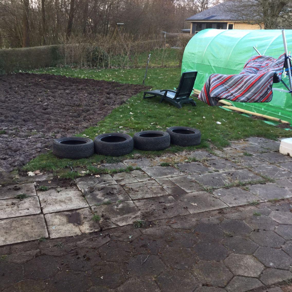 Så er vi kommet et stykke længere i haven og poly tunnelen er sat op. Nu jan vi begynde at så og plante i haven.  Der skal forspires squash og græskar til haven. Kartoflerne er klar til at komme i jorden allerede. Håber vejret arter sig.