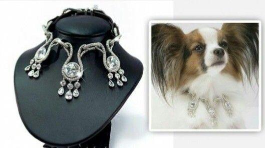 Image result for Diamond Dog Collar: $3.2 Million