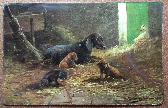 Antique postcard 1905 CHIEN Dog DACHSHUND Teckel by JustSweetHoney