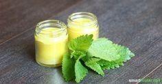 Zitronenmelisse als natürliche Lippenpflege und gegen Herpes        El bálsamo…