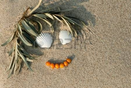 Sea buckthorn twig and berries with sea shells Arranged as smiling face in the sand