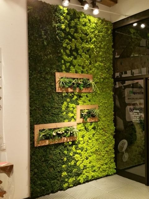 Moss Is New Paint How To Create Art With Moss Green Wall Decor Living Wall Indoor Wall Garden
