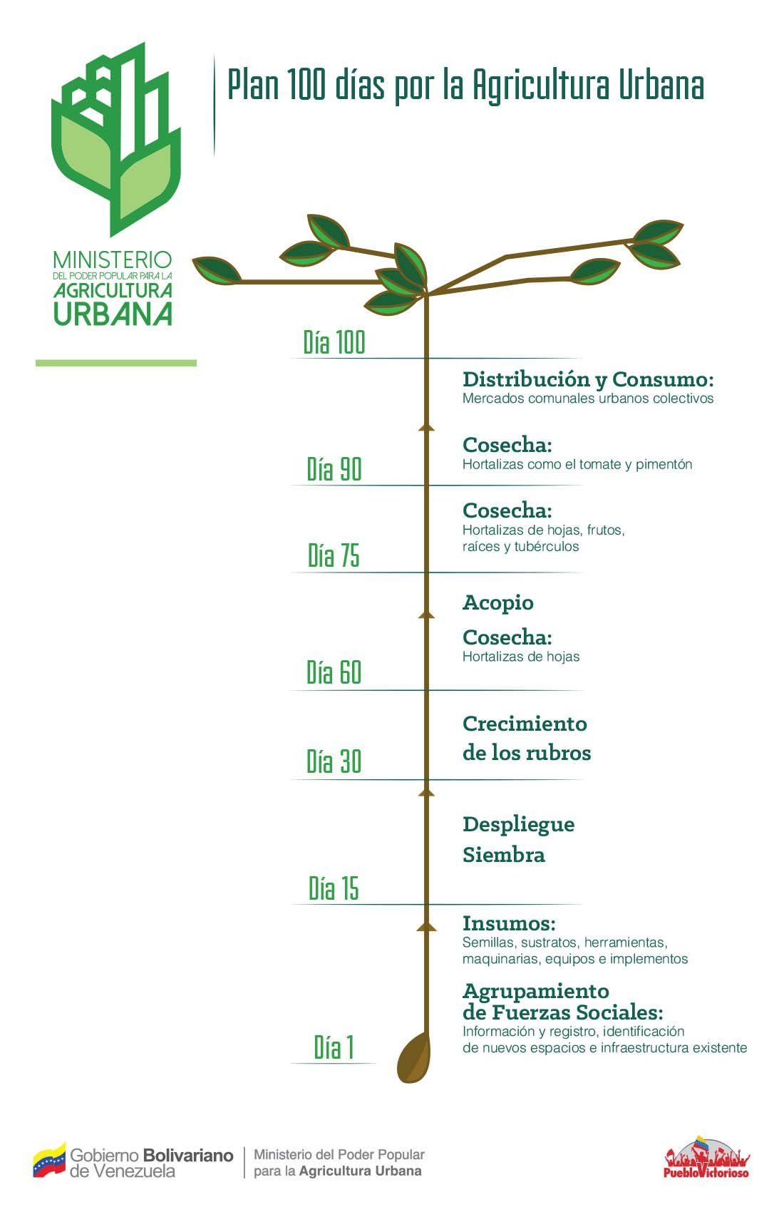 Plan 100 Días de Agricultura Urbana | AGRICULTURA URBANA PERMANENTE ...