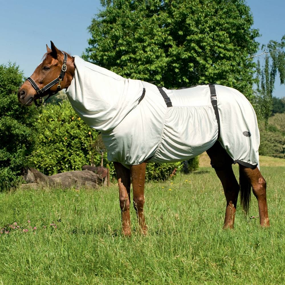 Equi Theme Bug Rug Sweet Itch Fly Equestrian