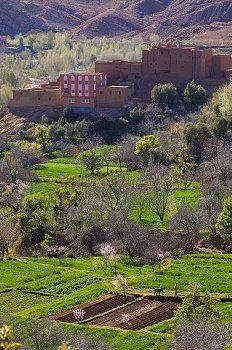 Dades valley, Dades gorges, Ouarzazate region, Morocco