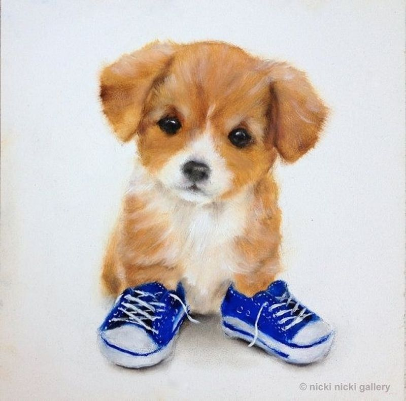 38 Can I Borrow Your Shoes 49 Adorably Cute Dogs To Make