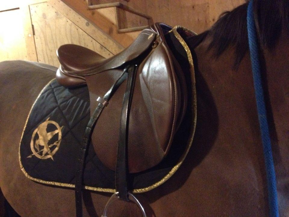 Hunger games saddle pad :)