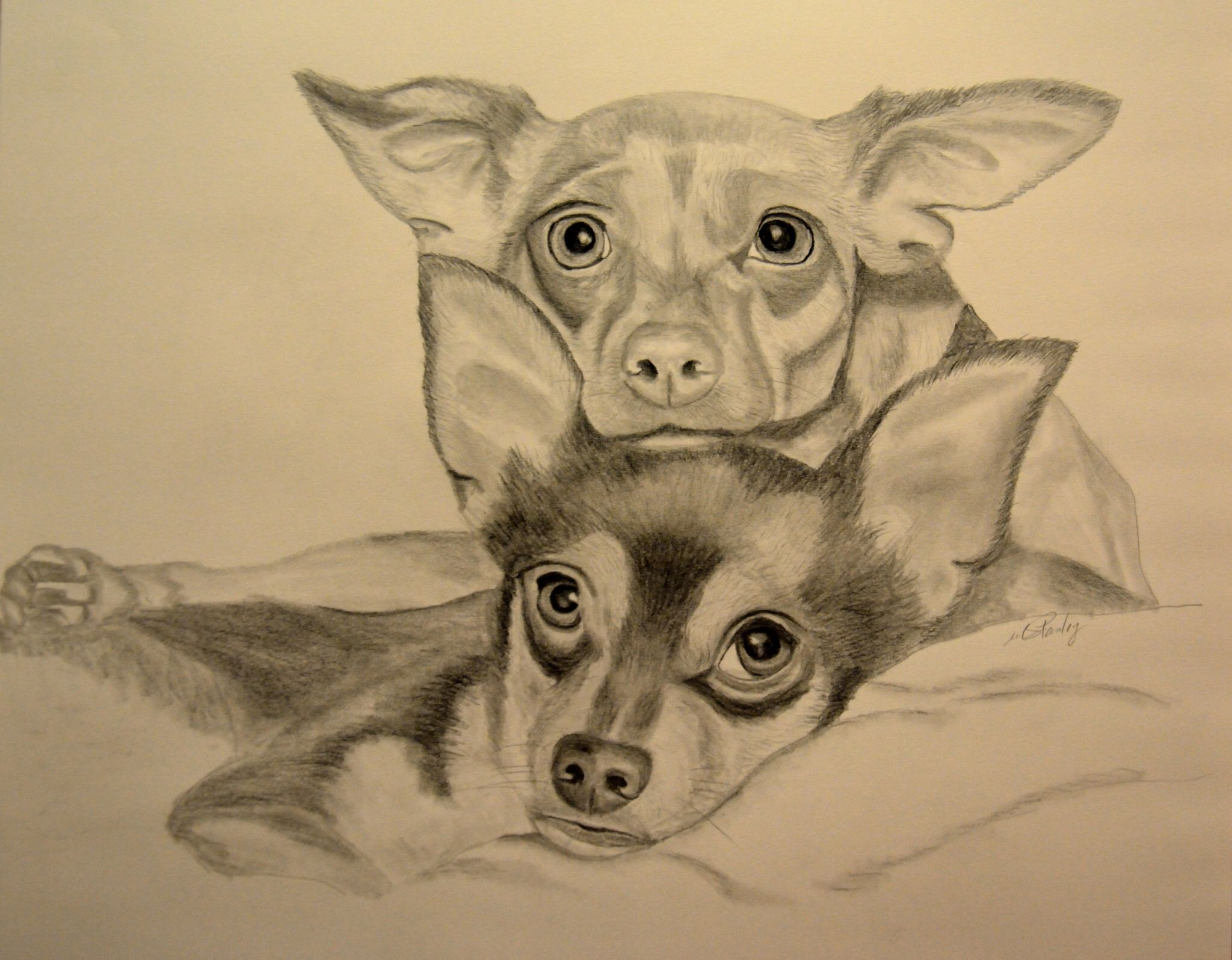 Winky and Kiwi -graphite