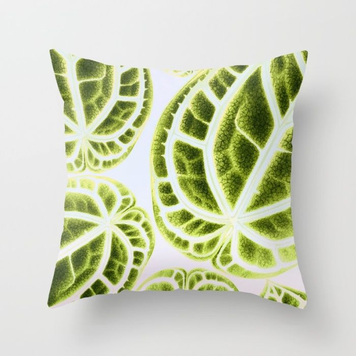 https://society6.com/product/houseplant-green_pillow