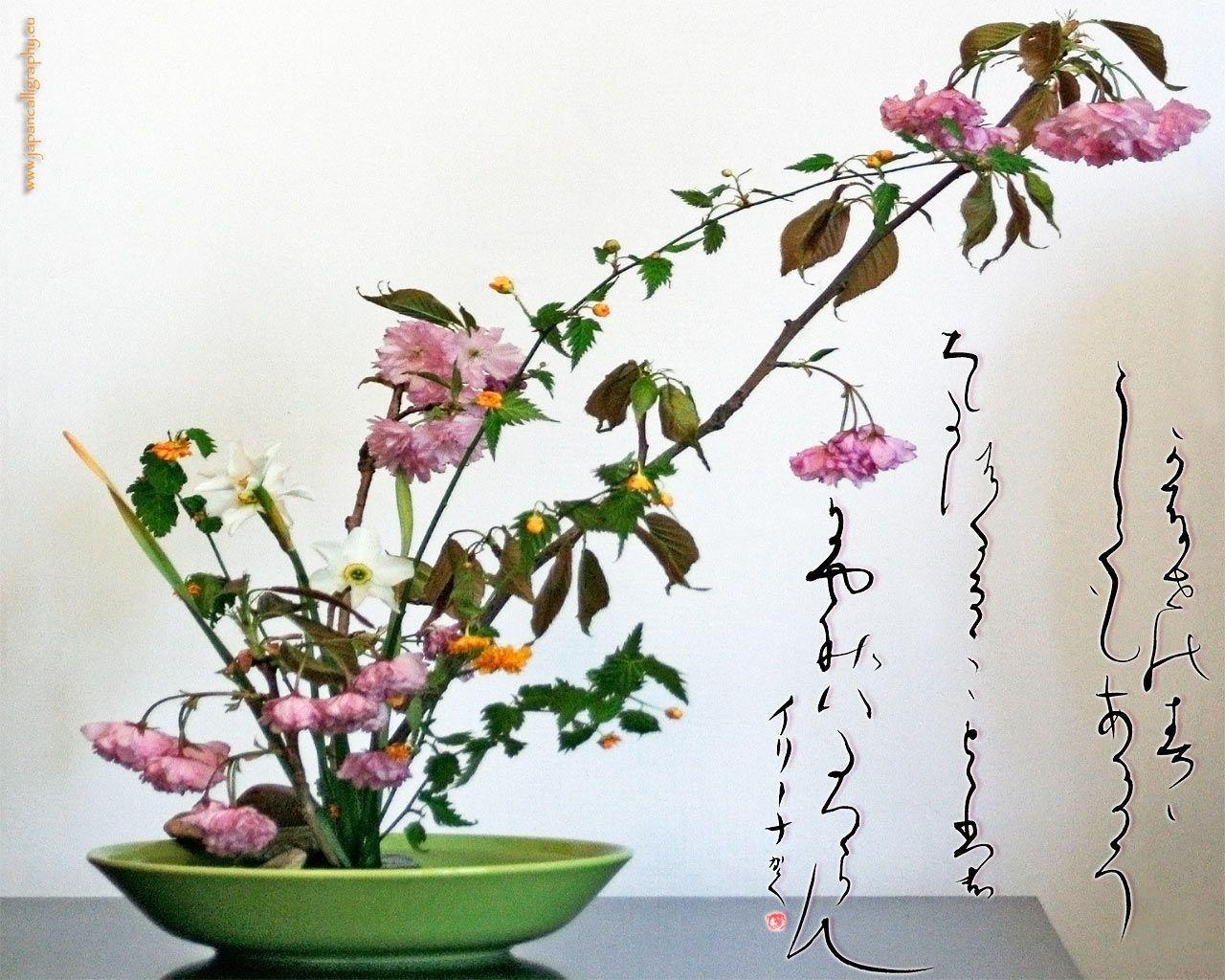platos para ikebana Google Search Ikebana Pinterest