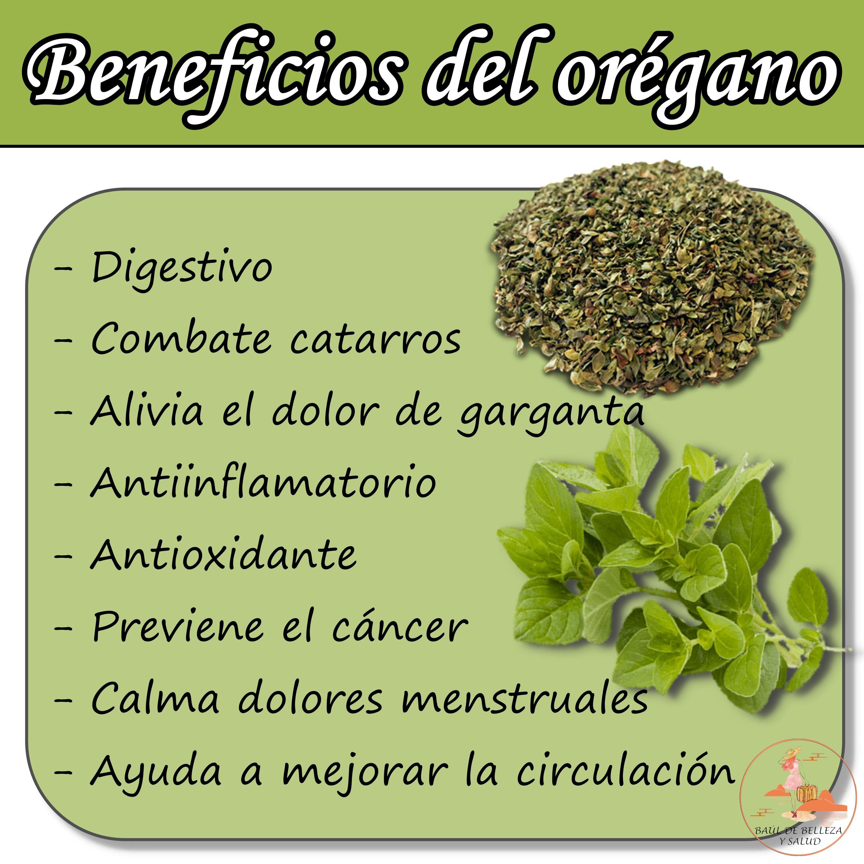 Beneficios Del Orégano Recetas Para La Salud Frases De Nutrición Nutrición