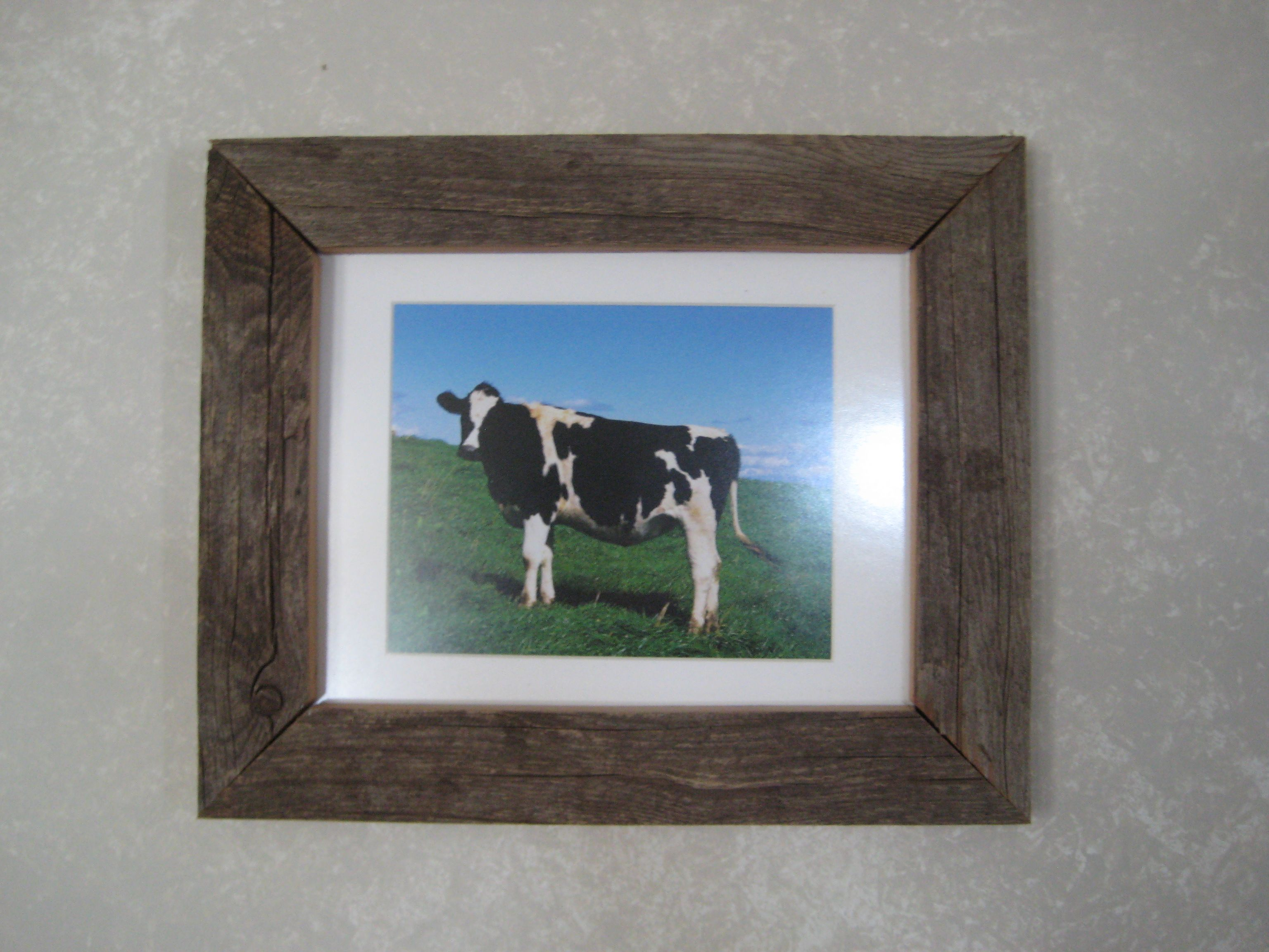 old barn wood picture frame with cow | Country Living | Pinterest ...