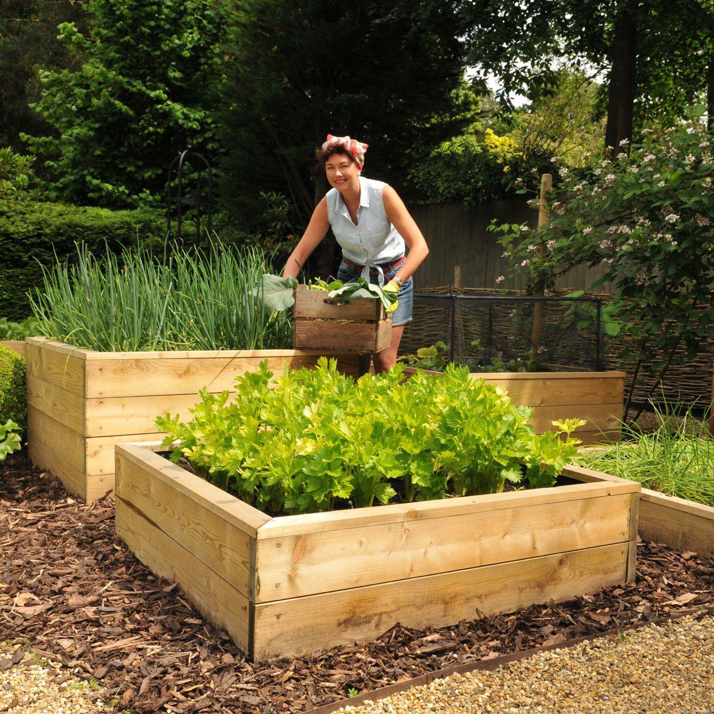 Raised Bed Gardening   Wooden Raised Garden Bed From Harrod Horticultural