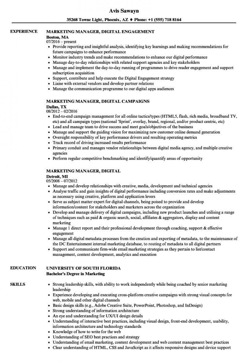 Digital marketing resume template pdf in 2021 resume