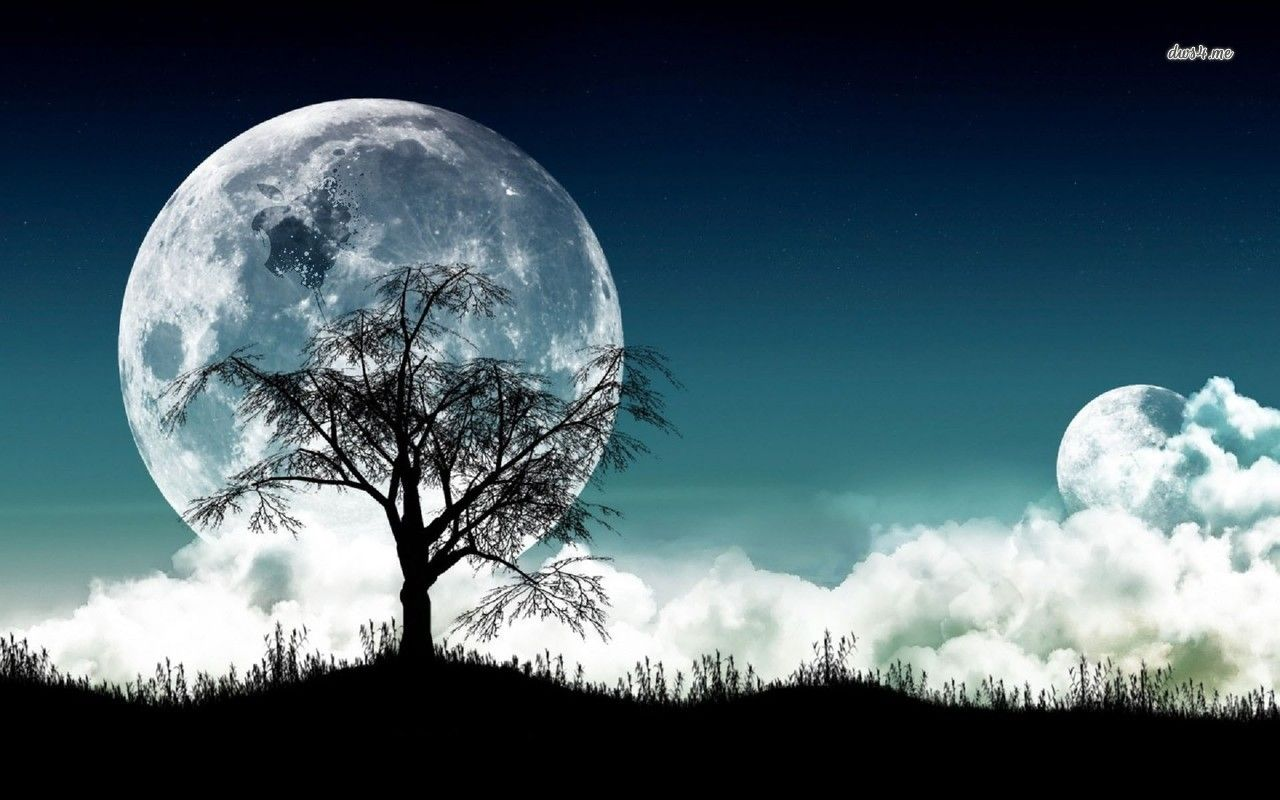 Moonlight Hd Wallpaper Super Moon Pictures Fantasy Tree Good Night Moon Hd wallpaper trees silhouette night moon