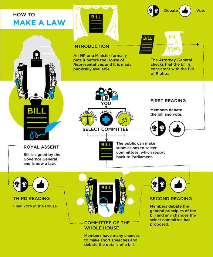 How to make a law in NZ  infographic