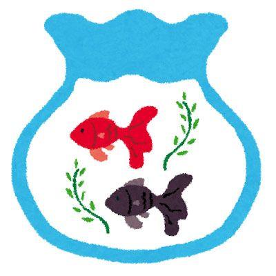金魚鉢の中で優雅に泳ぐ金魚達を描いたフリーイラスト 夏モチーフ
