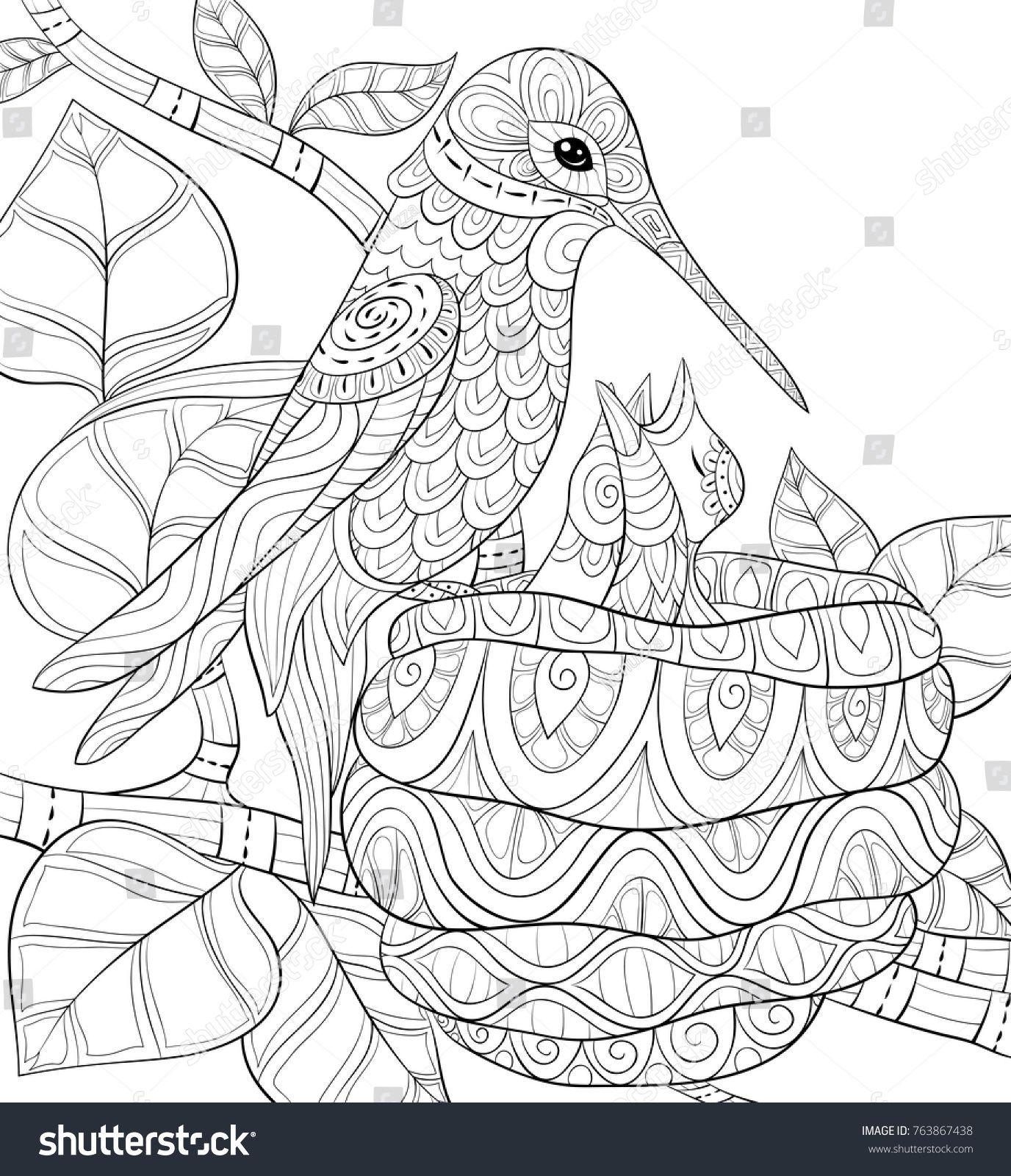 Pin Af Barbara Pa Coloring Birds