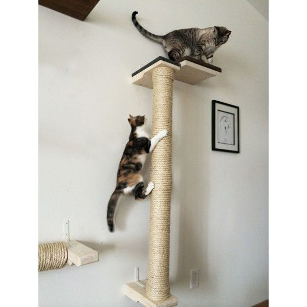 Catastrophicreations Vertical Wall Mounted Sisal Cat Pole Cats