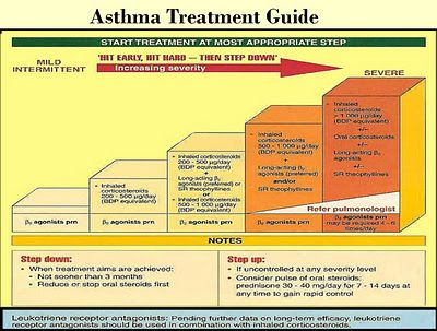 Asthma Treatment Guide - Free Medical E-Book Pharmacy - asthma action plan