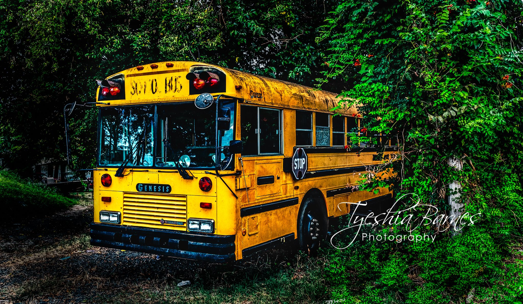 Memories of a school bus #naturephotography #landscapephotography #travel #travelphotographer #nature #landscape #school #bus #schoolbus #photographylover #photographylovers #photographylife #photographyislife #fineart #fineartphotography
