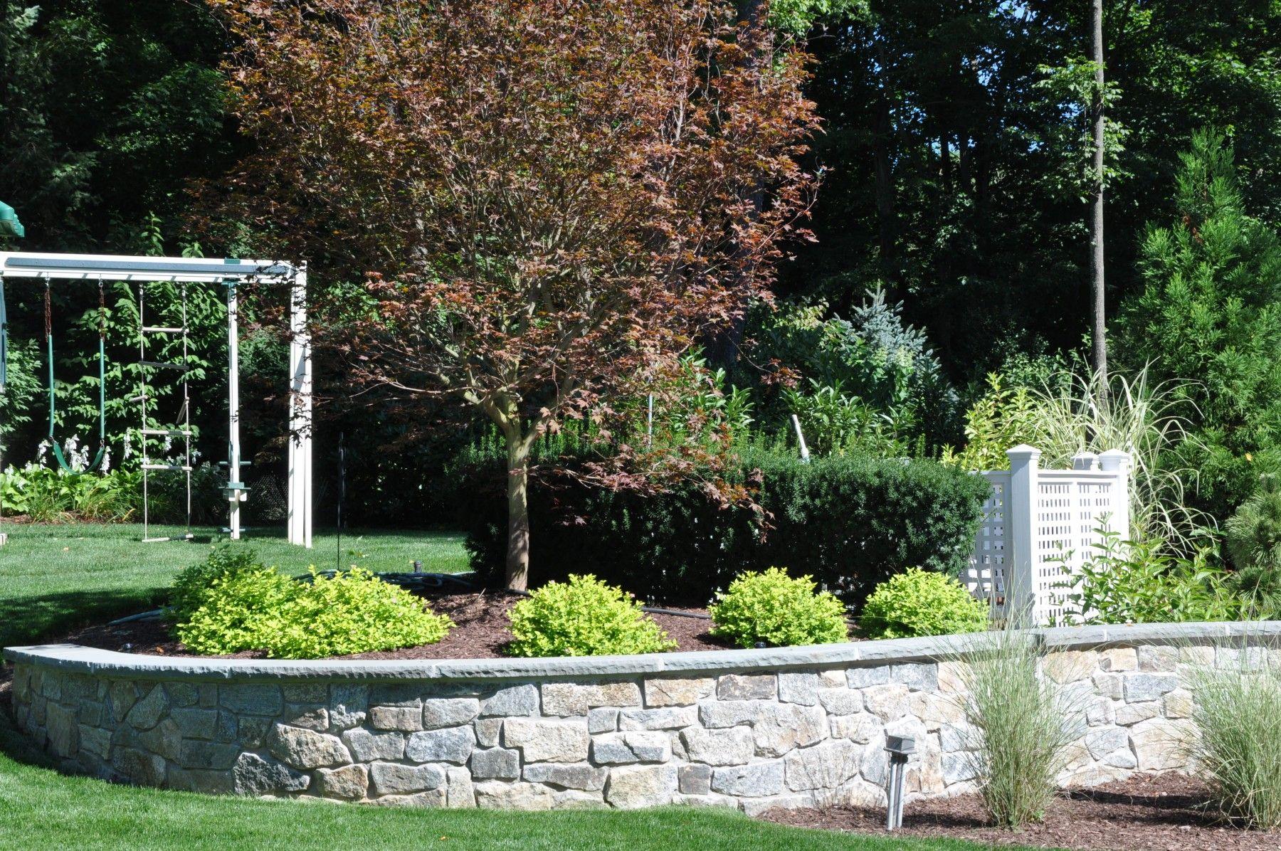 Does Warm Winter Weather Affect Your Lawn Plants Winter Lawn Landscape Maintenance Winter Plants
