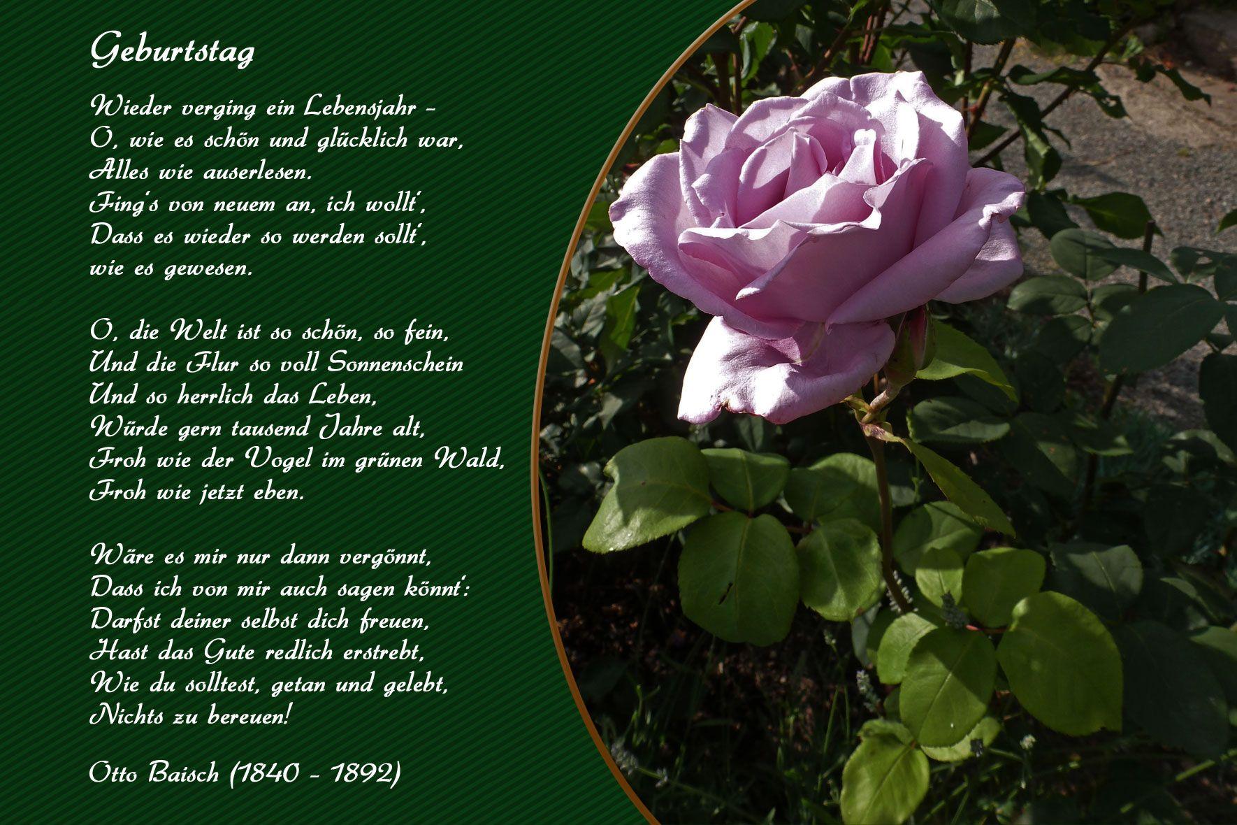 Geburtstagswunsche Geburtstag Blumen Gedichte Maerchen