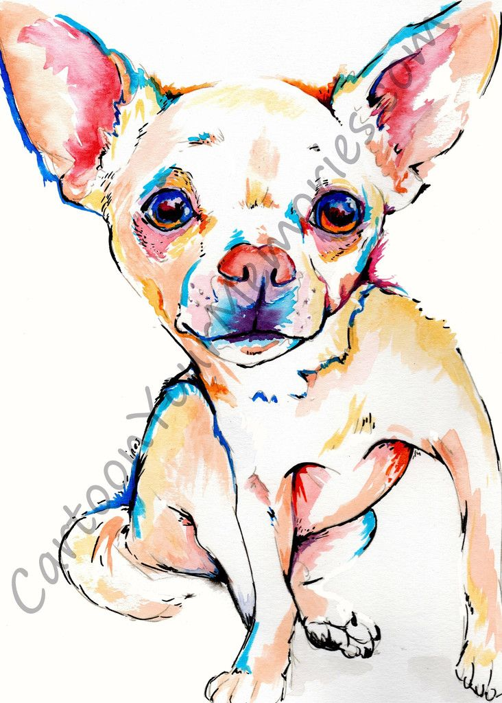 Chihuahua Watercolor Print Art Favourites Pinterest