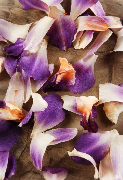 instead of rose petals having these in the wedding colors to walk down the asile on