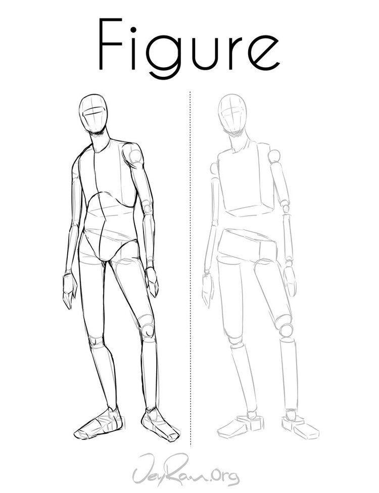 Como Dibujar La Figura Humana Pdf Imprimible Jeyram Art In 2020 Human Figure Drawing Body Reference Drawing Human Anatomy Drawing