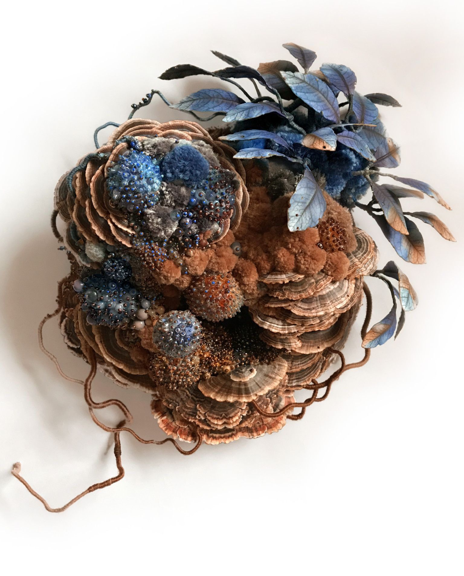 Symbiotic Assemblages By Amy Gross Combine Animals And