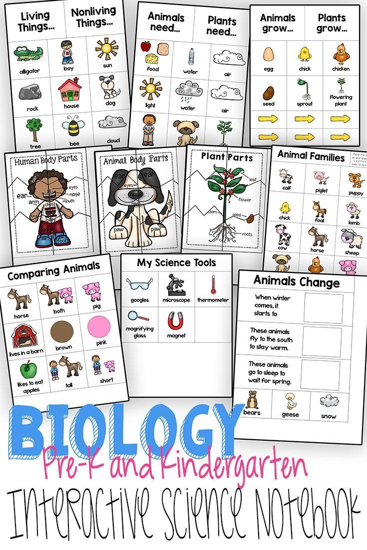 Science Interactive Notebook Preschool Science Worksheets Interactive Science Notebook Preschool Science Kindergarten Science Interactive Notebook [ 1102 x 735 Pixel ]
