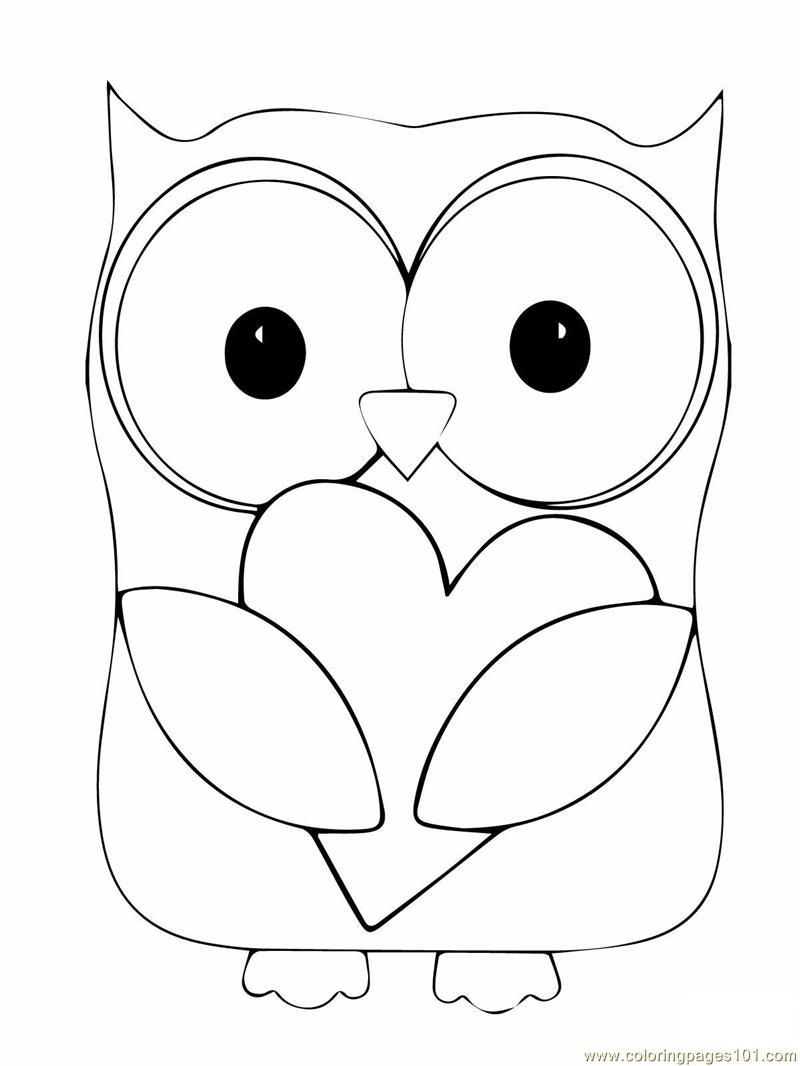 Owl Coloring Page Coloring Pages Owl Birds > Owl Free