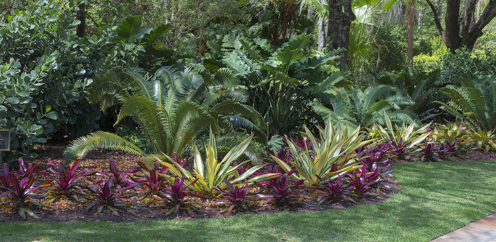 Colorful bromeliads and agaves adorn this lovely Jupiter, Florida ...
