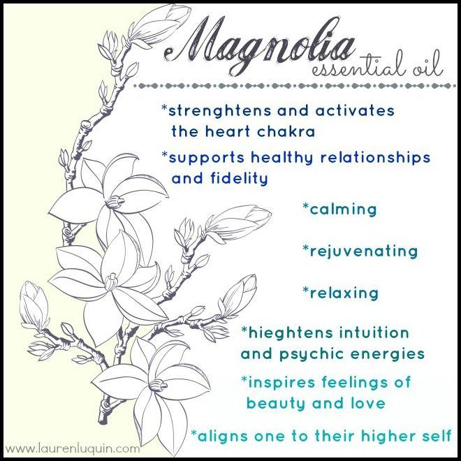 Magnolia Oil In 2020 Healing Essential Oils Essential Oils Magnolia