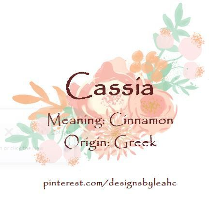 Baby Baby Names Girl With Nicknames Cass Cassia Cinnamon Girl