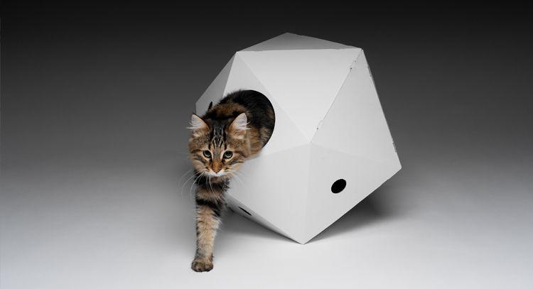 cardboard kitty home