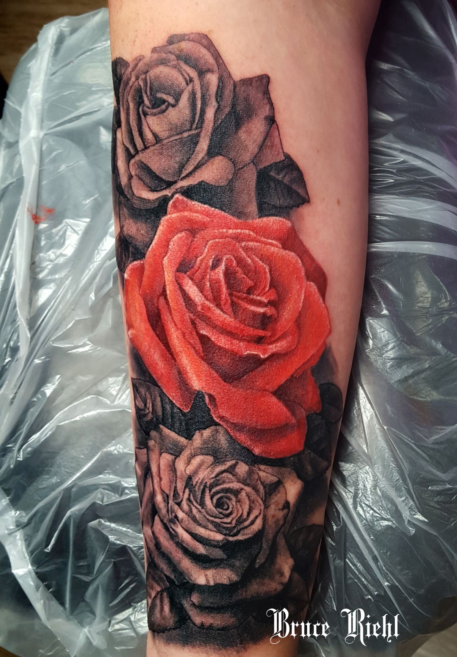 One Realistic Red Rose With Black And Grey Roses By Bruce Riehl