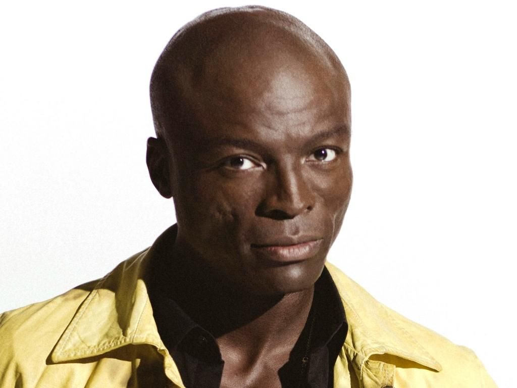 1000  images about Seal on Pinterest
