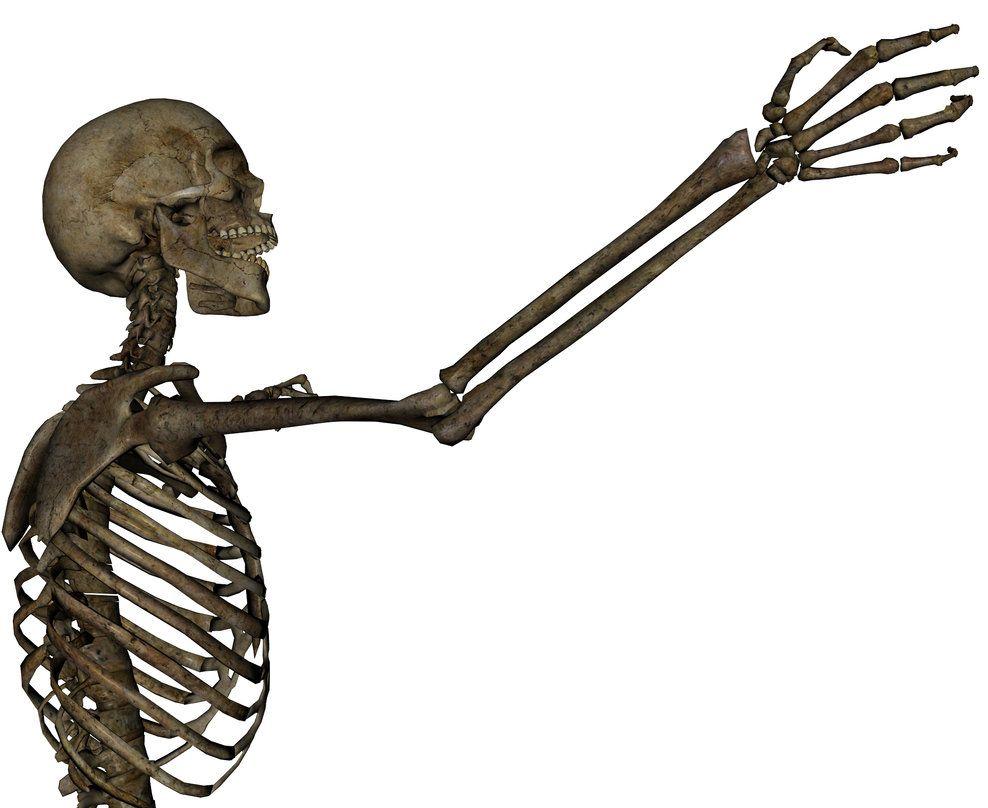 Skeleton Grasping 2 By Markopolio Stock Skeleton Arm Skeleton Lion Sculpture