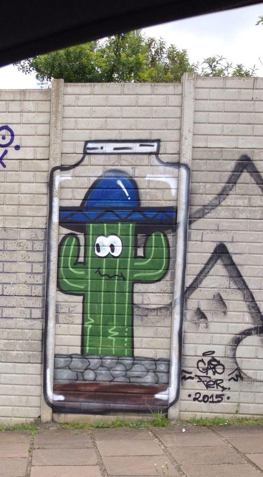Cactus Art Cas Fer Porto Alegre Graffiti