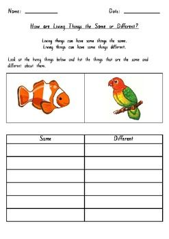 Living Things Worksheets Similarities And Differences