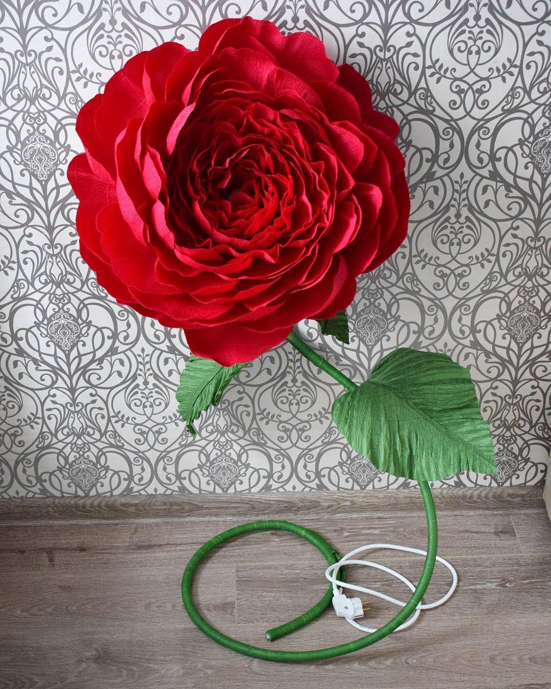 Роза для фотосессии своими руками фото 269