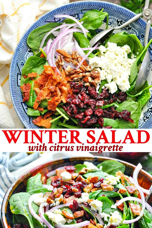 Winter Salad With Citrus Vinaigrette Recipe Pasta Salad Recipes Winter Salad Healthy Dinner Salads