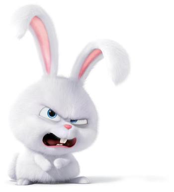 Snowball The Secret Life Of Pets Cute Bunny Cartoon Secret Life Of Pets Cute Cartoon Wallpapers