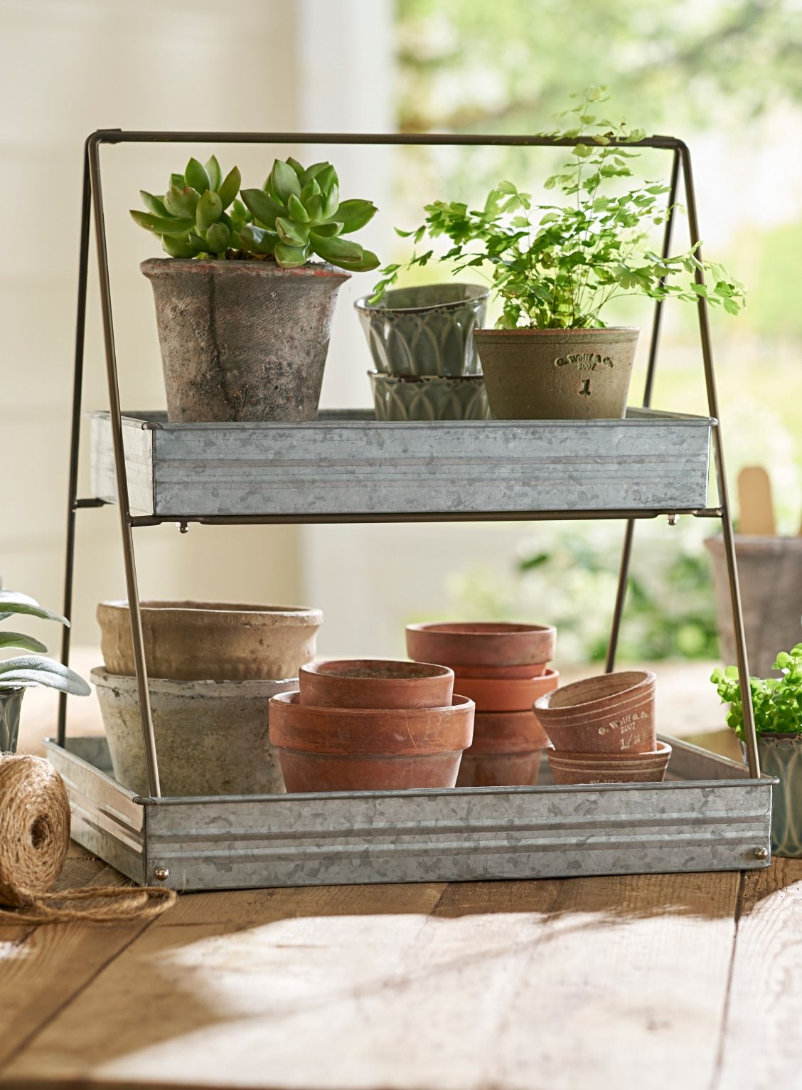 Better Homes And Gardens Container Ideas
